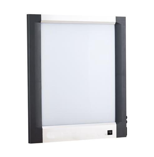 Single Bay Slimline LCD X-Ray Viewer