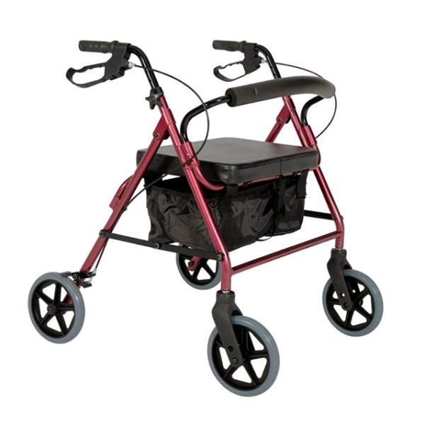 Bariatric Mobility/Walking Aids