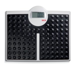 Seca Electronic Bariatric Flat Scales