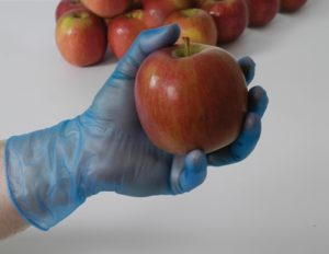 Lightly Powdered Vinyl Plus Gloves – Blue