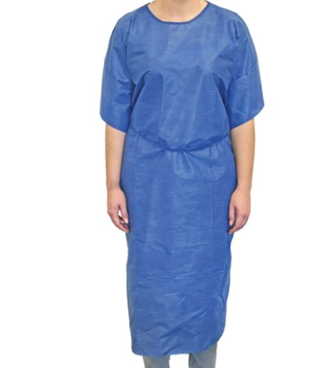 Haines Disposable Economy Patient Gown